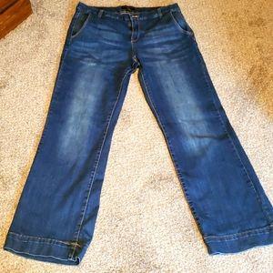 Banana Republic Women's jeans size 32/14